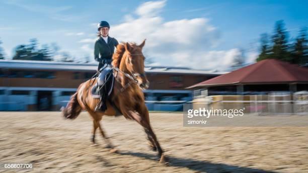 Pferderennen race
