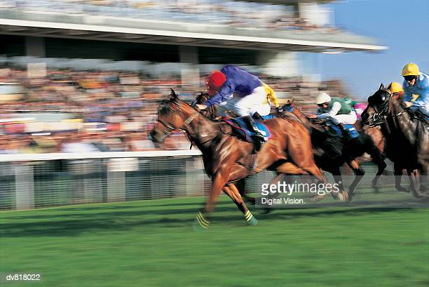 horse race - horse racing stock pictures, royalty-free photos & images