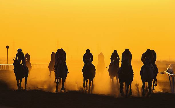 Horse Racing Against Clear Orange Sky Wall Art