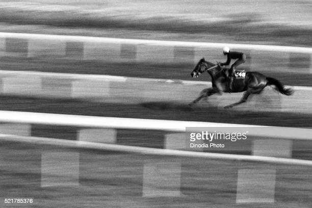 horse racing at mahalaxmi race course, mumbai, maharashtra, india, asia, 1985 - 1985 stock pictures, royalty-free photos & images