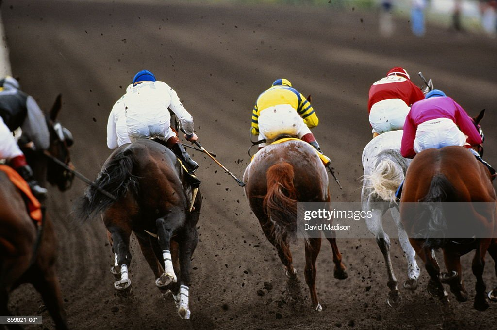 Horse racing, back view of five competitors, mud flying up : Stock Photo