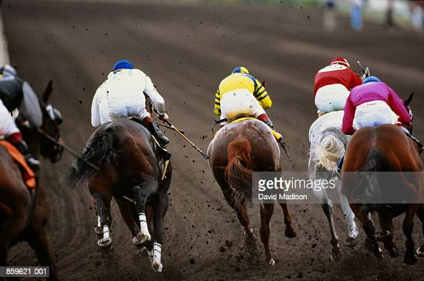 horse racing, back view of five competitors, mud flying up - thoroughbred horse - fotografias e filmes do acervo