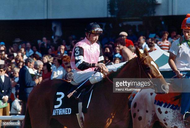 Belmont Stakes Jockey Steve Cauthen aboard Affirmed before race at Belmont Park Affirmed wins Triple Crown View of Jorge Velasquez aboard Alydar...