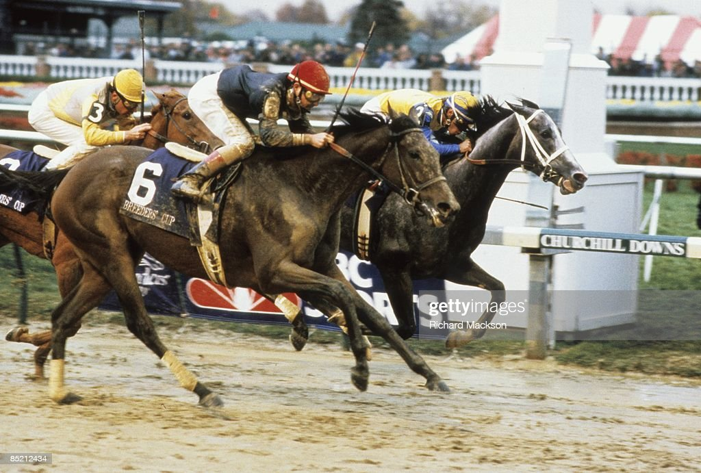 Randy Romero in action aboard Personal Ensign (6) during race at Churchill Downs. Louisville, KY 11/5/1988