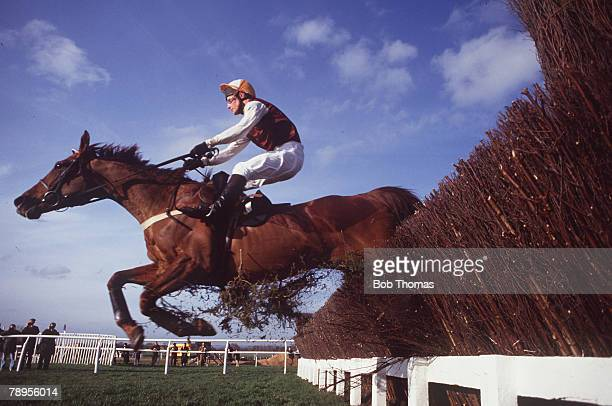 Horse Racing Cheltenham National Hunt Festival 16th18th March 1993 Queen Mother's Championship Steeplechase Richard Dunwoody on his horse Waterloo...