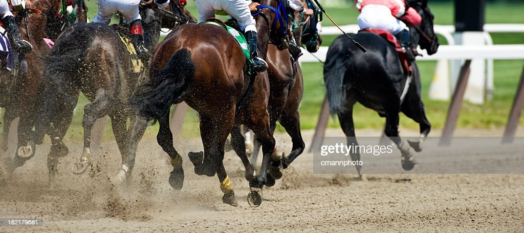 Horse Racing down the stretch they come : Stock Photo