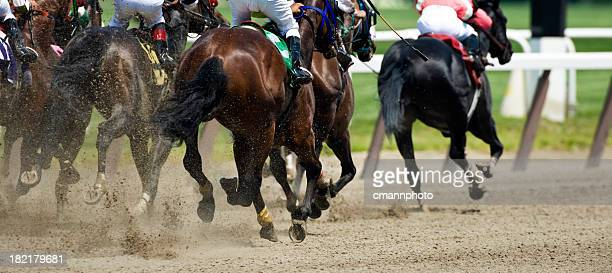 horse racing down the stretch they come - horse racing stock pictures, royalty-free photos & images