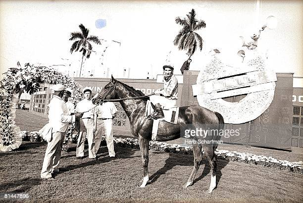 Horse Racing Florida Derby Bill Shoemaker victorious aboard Northern Dancer in winner's circle after winning race at Gulfstream Park Hallandale FL...