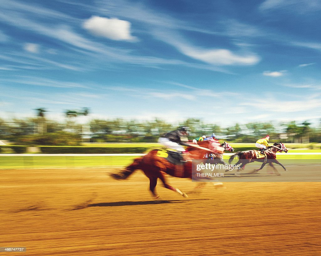 Horse Racing Motion Blur : Stock Photo