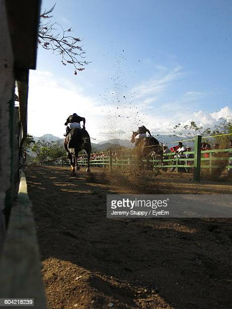 horse racing on field against sky - racehorse stock pictures, royalty-free photos & images