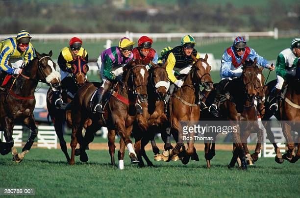 horse racing - horse racecourse stock photos and pictures