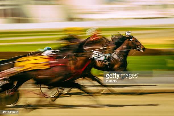 horse pferderennen - racehorse stock-fotos und bilder