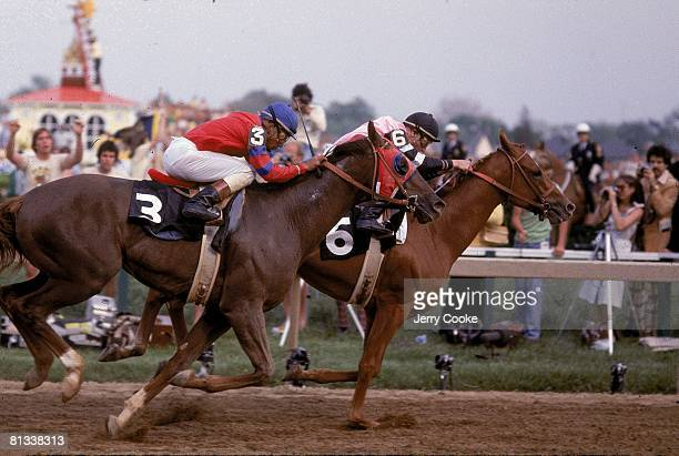 Horse Racing Preakness Stakes Steve Cauthen in action aboard Affirmed vs Jorge Velasquez in action aboard Alydar at Pimlico Race Track Baltimore MD...