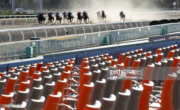 Horse racing takes place behind closed doors due to the novel coronavirus outbreak at the Oi Racecourse on February 27 2020 in Tokyo Japan
