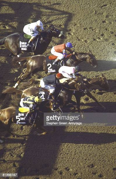 Horse Racing The Belmont Stakes Aerial view of Steve Cauthen in action aboard Affirmed at start of race vs Jorge Velasquez in action aboard Alydar...