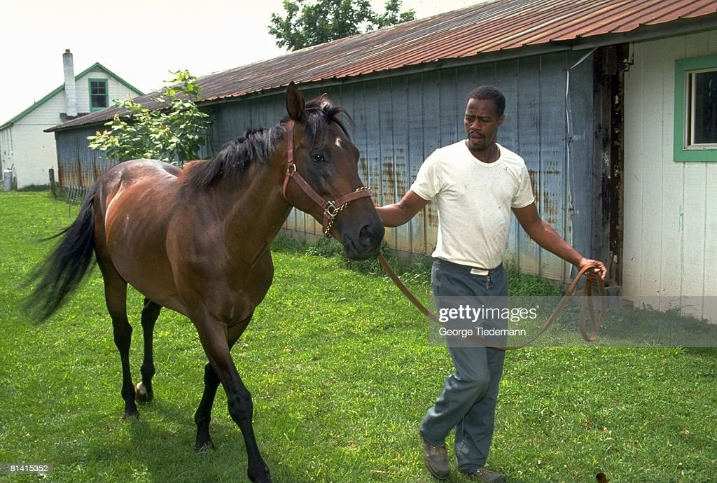 Thoroughbred Retirement, Portrait of Robert Ross with horse, animal