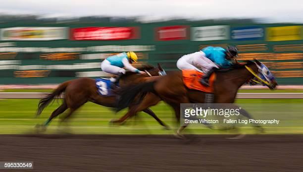Horse Racing Time Exposure
