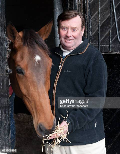Horse racing trainer Nicky Henderson with Binocular who won the Champion Hurdle at Cheltenham last year at his stables in Lambourn England 22nd...