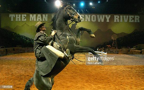 A horse rears up during a media call for The Man from Snowy River Arena Spectacular held at the Entertainment Centre in Sydney Australia on August 20...