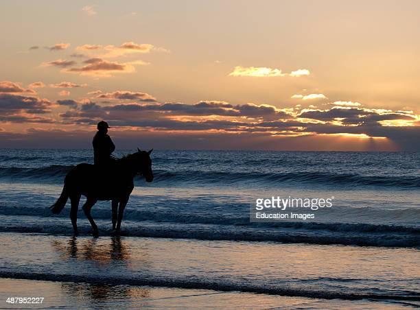 Horse rider at the beach Bude Cornwall UK