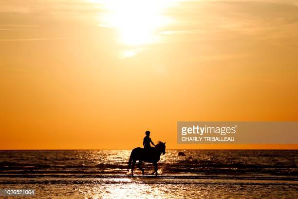 A horse rider guides his steed in the shallows at sunset in the French northwestern sea resort of Deauville on September 3 2018