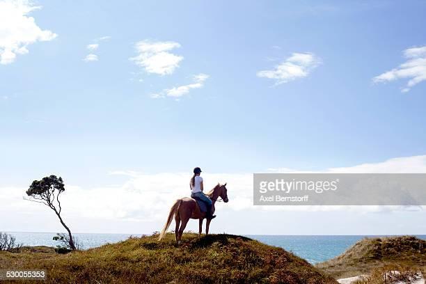 Horse rider on hilltop, Pakiri Beach, Auckland, New Zealand