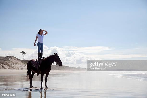 Horse rider standing on horse, Pakiri Beach, Auckland, New Zealand