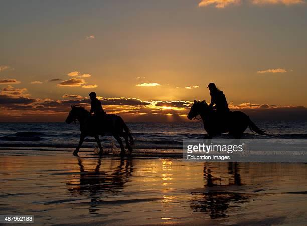 Horse riders at sunset Bude Cornwall UK
