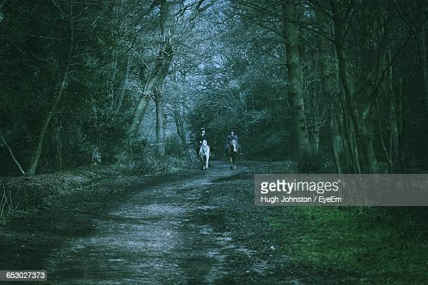 Horse Riders On Pathway Amidst Trees In Forest