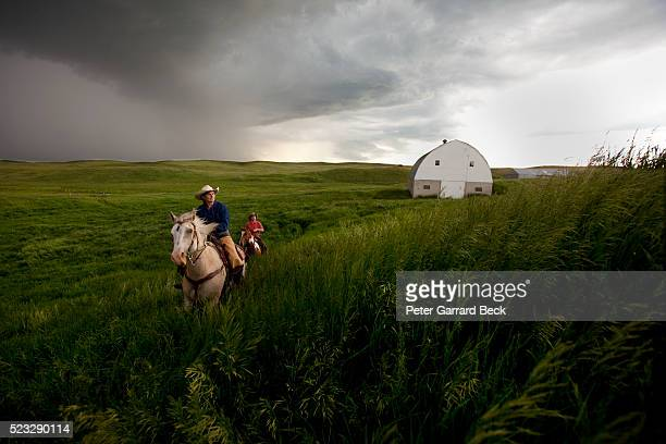 horse riders on prairie - north dakota stock pictures, royalty-free photos & images