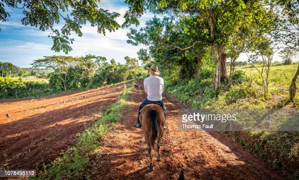 horse riding in the vinales valley in cuba - valle de vinales stock photos and pictures