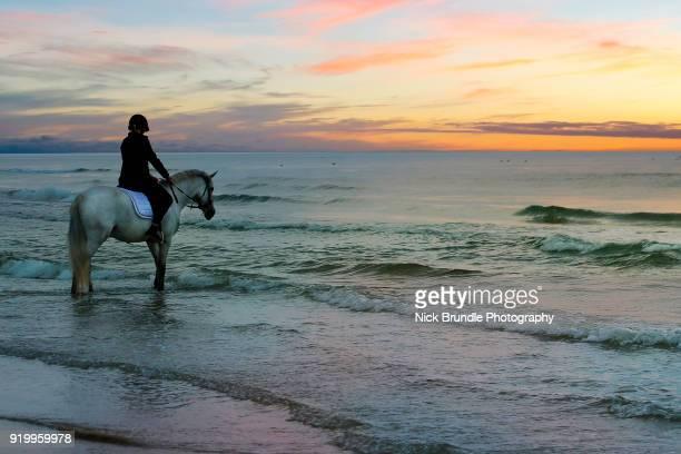 Horse riding, Jutland, Denmark