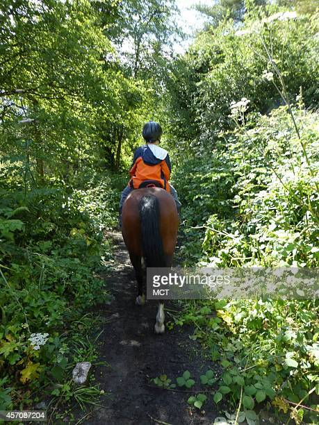 Horse riding lessons are roughly an hour and a half from the Gower Peninsula in South Wales where you can find the beautiful Brecon Beacons Once you...