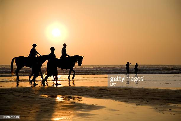 Horse riding on sunset
