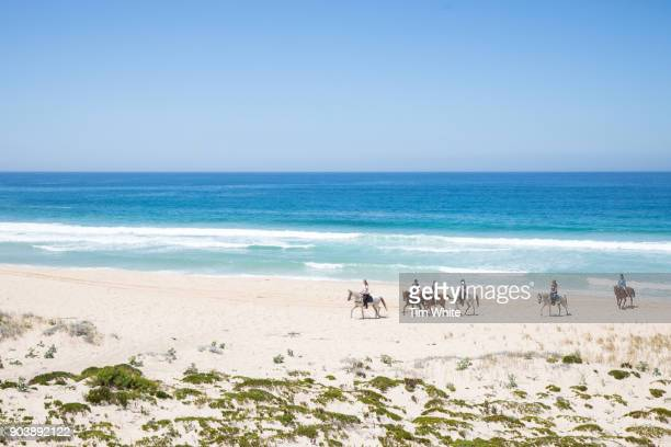 horse riding on the beach, comporta, portugal - comporta portugal stock photos and pictures
