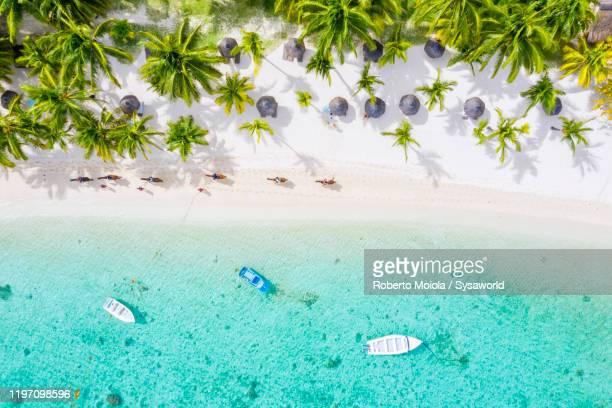 horse riding on tropical sand beach, aerial view, indian ocean, mauritius - islas mauricio fotografías e imágenes de stock
