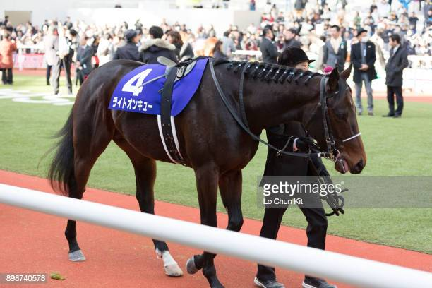 Horse Right on Cue being led around the paddock during the Asahi Hai Futurity Stakes at Hanshin Racecourse on December 17 2017 in Takarazuka Japan