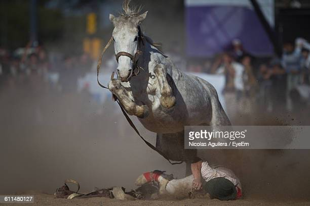 Horse Running Over Fallen Jockey On Field