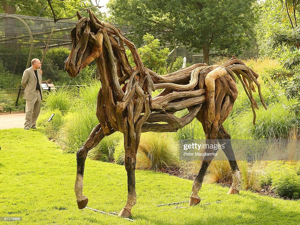 A horse sculpture called 'Atlantis' made from fallen Dartmoor oak by artist Heather Jansch, is displayed at the Recycled Sculpture Show at London Zoo on May 29, 2008 in England. Twenty sculptors have used everyday waste and scrap to create works of art that will remain on show until September 5, 2008 at the Zoo.