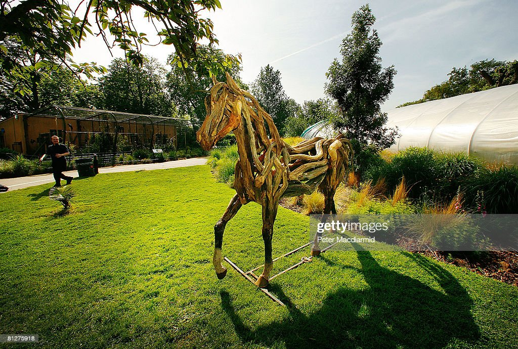 A horse sculpture called 'Atlantis', made from fallen Dartmoor oak by artist Heather Jansch, is displayed at the Recycled Sculpture Show at London Zoo on May 29, 2008 in England. Twenty sculptors have used everyday waste and scrap to create works of art that will remain on show until September 5, 2008 at the Zoo.