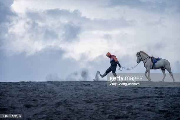 horse shepherd at bromo mountain surabaya, indonesia. - mt semeru stock pictures, royalty-free photos & images