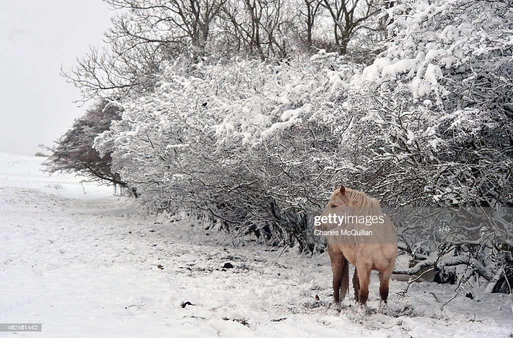 Snow Hits Parts Of The UK : News Photo