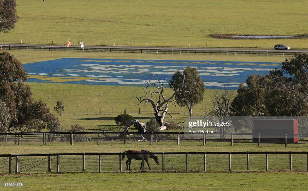 A horse stands in a field near a Sportsbet.com.au Rugby 2013 Lions Tour, Rooting for the Wallabies campaign advertisement which has been painted onto the grass in a field near Melbourne Airport on June 21, 2013 in Melbourne, Australia. The 170-metre-by-90-metre advertisement for online bookmaker Sportsbet is directly under Melbourne Airports international flight path and shows a wallaby hugging a lion from behind. It is to promote the bookmaker ahead of the upcoming rugby union series between the Australian Wallabies and the British and Irish Lions.