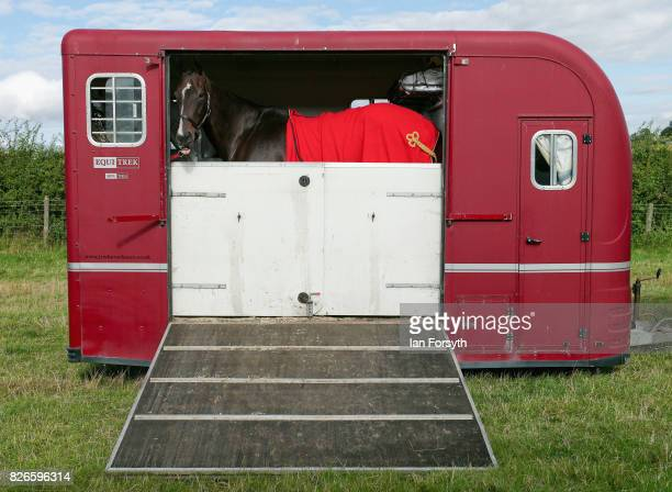 Horse stands in its trailer during the Osmotherley Country Show on August 5, 2017 in Osmotherley, England. The annual show hosts pony, cattle and...