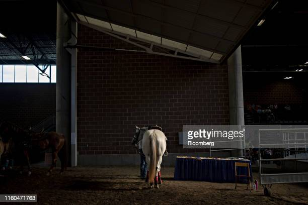 A horse stands near the show ring during a Future Farmers of America barrel racing event at the Iowa State Fair in Des Moines Iowa US on Thursday Aug...