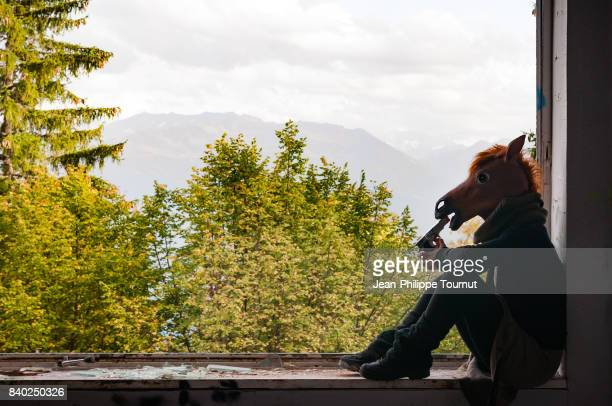 horse thinking of suicide - suicide stock photos and pictures