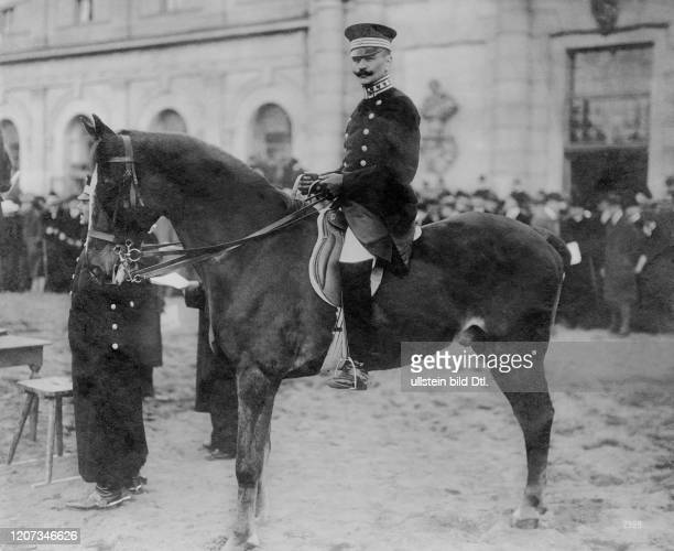 Orlon the horse of Empress Augusta Victoria at the Marstall Auction in Potsdam Vintage property of ullstein bild