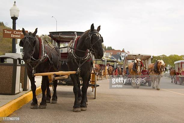 horse traffic - mackinac island stock pictures, royalty-free photos & images
