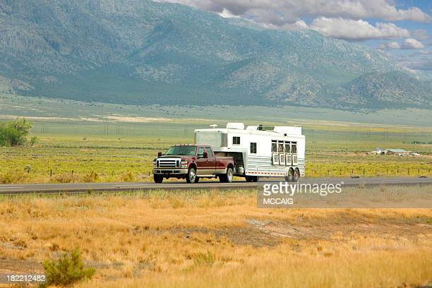 horse trailer - trailer stock pictures, royalty-free photos & images