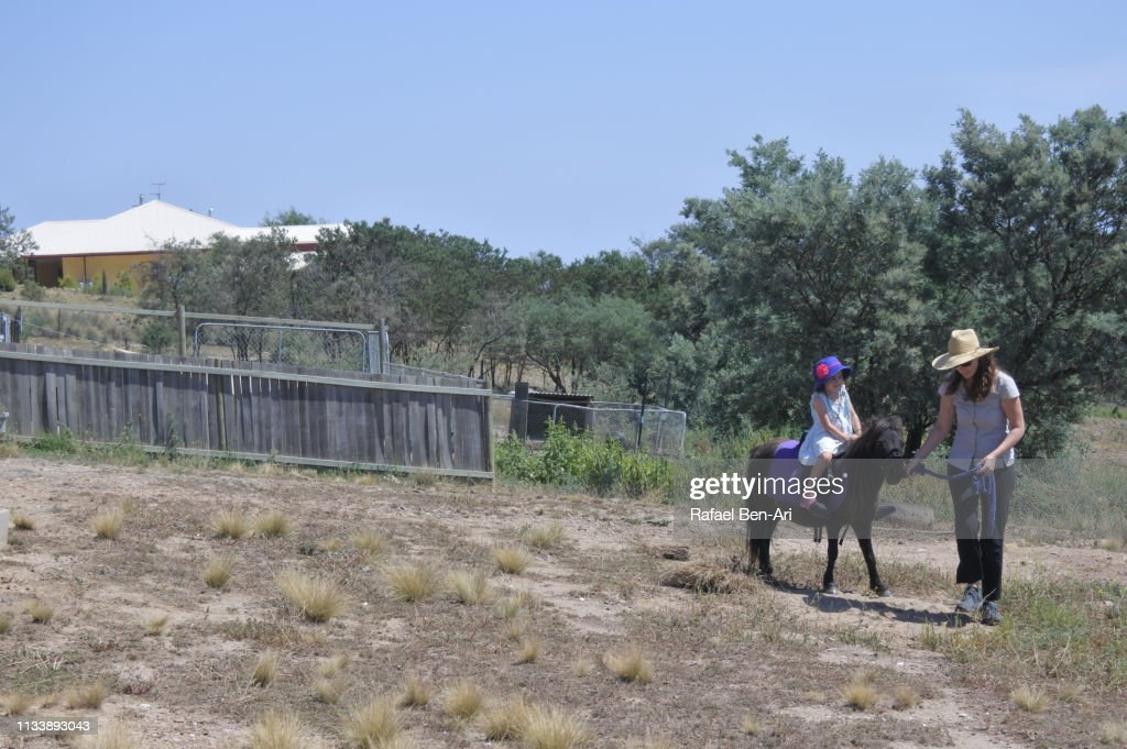 Horse trainer leading a young girl on a pony horse : Stock Photo